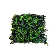 Greensmart Decor Artificial Moss Wall Panels, Set of 4 (MZ-6118)