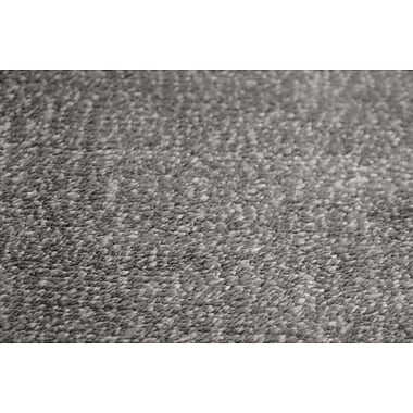AMER Rugs Pure Essence Charcoal Area Rug; 5' x 8'
