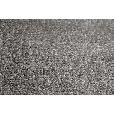 AMER Rugs Pure Essence Charcoal Area Rug; 2' x 3'