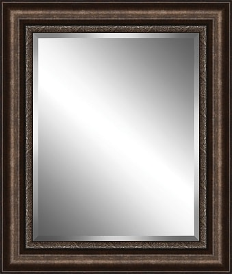 Ashton Wall D cor LLC Traditional Wood Framed Beveled Plate Glass Mirror; XX Large