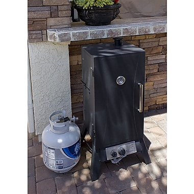 AZ Patio Heaters Vertical Charcoal Smoker; Propane