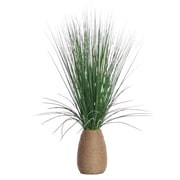 "Laura Ashley 29"" Tall Grass with Twigs in Hemp Rope Container 22"" x 22"" x 29""H (VHA102438)"