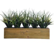 "Laura Ashley 12"" Tall Plastic Grass in Wooden Pot 24"" x 9"" x 12""H (VHA102439)"