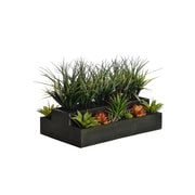 "Laura Ashley 14"" Tall Plastic Grass in 26""W x 13""D Wooden Pot (VHA102440)"