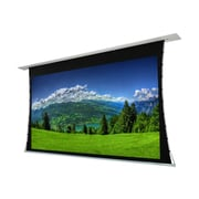 """EluneVision 120"""" 16:9 Titan Tab Tensioned Motorized Projector Screen"""