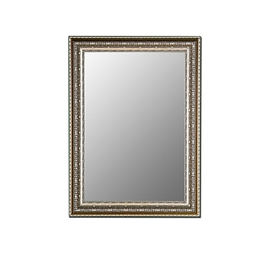 Hitchcock Butterfield Company Venetian Washed Silver Wall Mirror; 66.5''H x 30.5''W x 1.5''D