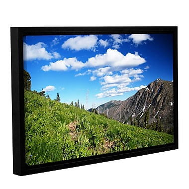 ArtWall Mountain Meadow by Dan Wilson Framed Photographic Print on Wrapped Canvas; 16'' H x 24'' W