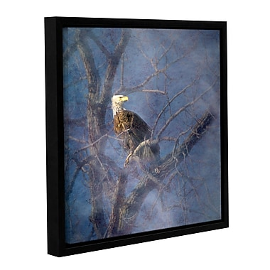 ArtWall Wise Bald Eagle by Antonio Raggio Framed Graphic Art on Wrapped Canvas; 14'' H x 14'' W