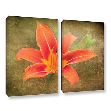 ArtWall Flowers In Focus 4 by Antonio Raggio 2 Piece Graphic Art on Wrapped Canvas Set