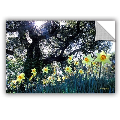 ArtWall ArtApeelz Daffodils And The Oak by Kathy Yates Photographic Print; 24'' H x 36'' W x 0.1'' D