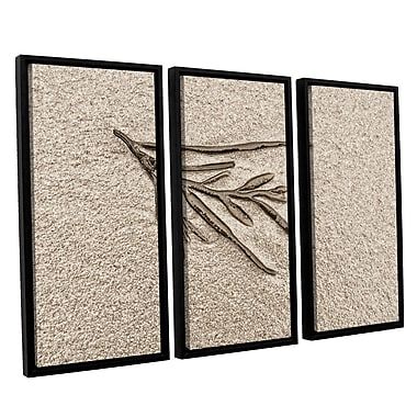 ArtWall 'Beach Find III' by Cora Niele 3 Piece Framed Graphic Art on Wrapped Canvas Set