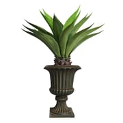 "Laura Ashley 46"" Tall Giant Aloe in Planter (VHX120213)"