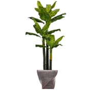 "Laura Ashley 82"" Tall Real Touch Evergreen in Planter (VHX123203)"