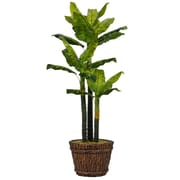 "Laura Ashley 80"" Tall Real Touch Evergreen in Planter (VHX123217)"