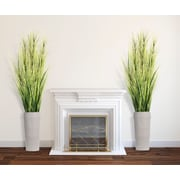 """Laura Ashley 81"""" Tall Onion Grass with Twigs in Planter (VHX114218)"""