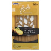 Glade Expressions Diffuser Kit, Pineapple & Mangosteen, Bamboo, Diffuser/.67oz Refill