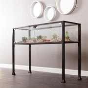 Southern Enterprises Terrarium Metal Console Table, Black, Each (CK8863)