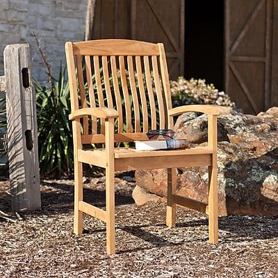 Southern Enterprises Waverly Teak Arm Chair, 2 Pieces/Set (CR5609)