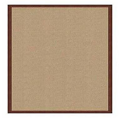 Linon Rugs Athena Sisal/Brown Area Rug; Rectangle 1'10'' x 2'10''