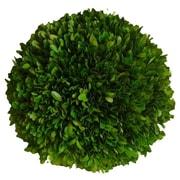 Mills Floral Boxwood Ball Desk Top Plant; 6'' H x 6'' W x 6'' D