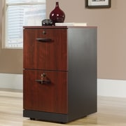 Red Barrel Studio Castalia 2 Drawer Filing Cabinet