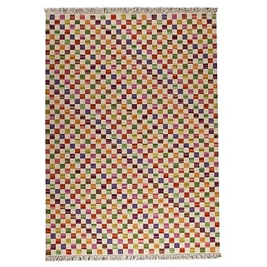 Hokku Designs Checkers White/Multi Area Rug; 6'6'' x 9'9''