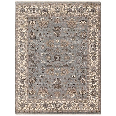 AMER Rugs Artisan Hand-Knotted Gray/Beige Area Rug; 4' x 6'