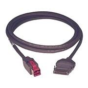 Pièce de rechange Epson, USB Plus Power, câble de 12 pi, gris foncé