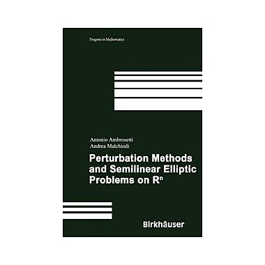 Perturbation Methods and Semilinear Elliptic Problems on Rn (Progress in Mathematics), Used Book (9783764373214)