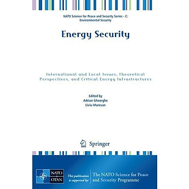 Energy Security: International and Local Issues, Theoretical Perspectives, and Critical Energy Infras (9789400707214)