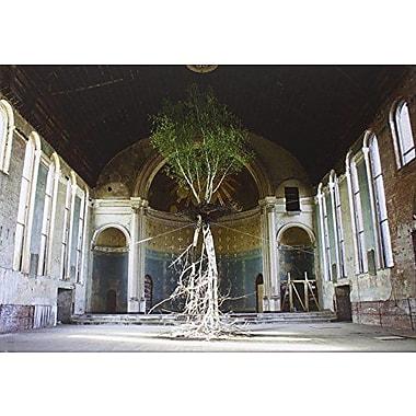 Shinji Turner-Yamamoto: Global Tree Project, New Book (9788862082280)
