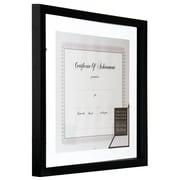 NielsenBainbridge Gallery Solutions Floating Document Picture Frame