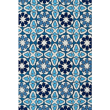 Park Avenue Rugs Handmade Indoor/Outdoor Area Rug; 8' x 10'