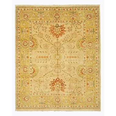 Eastern Rugs Hand-Knotted Beige Area Rug