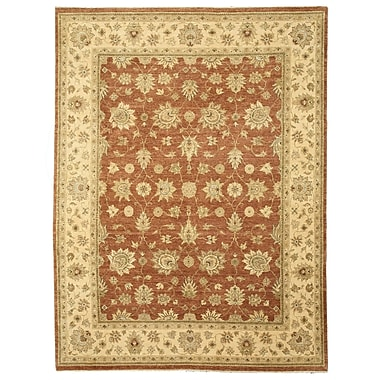 Eastern Rugs Hand-Knotted Rust Area Rug