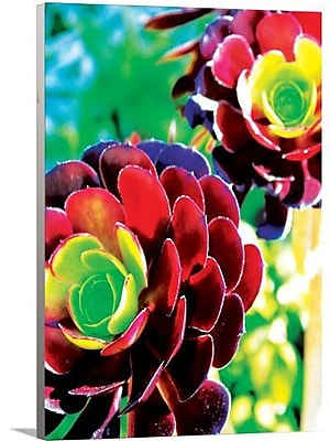 Artzee Designs 'Modern Rainbow Flower' Graphic Art on Wrapped Canvas; 20'' H x 16'' W x 0.75'' D