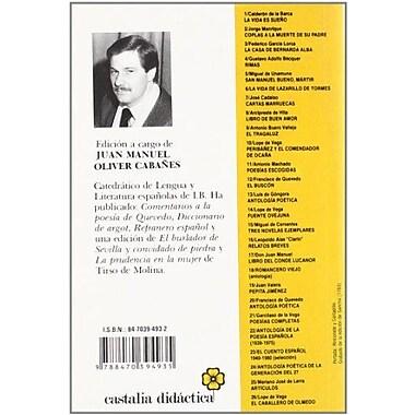 Novelas ejemplares. Rinconete y cortadillo. La espanola inglesa. El licenciado vidriera (Castalia Didactica (9788470394935)