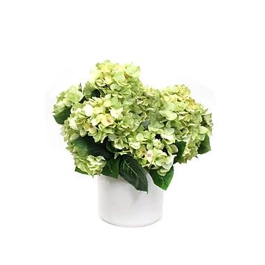 Dalmarko Designs Hydrangeas Flower in Planter