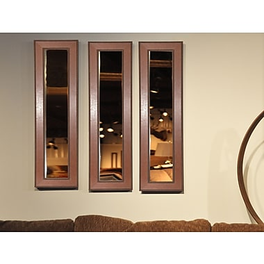 Rayne Mirrors Molly Dawn American Made Western Rope Mirror Panel; 31.5'' H x 10.5'' W x 0.75'' D