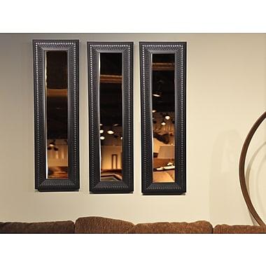 Rayne Mirrors Molly Dawn Royal Curve Mirror Panel; 39.5'' H x 11.5'' W x 1'' D
