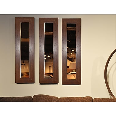 Rayne Mirrors Molly Dawn Mirror Panel; 39.5'' H x 11.5'' W x 0.75'' D
