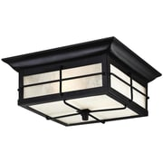 Westinghouse Lighting Orwell 2-Light Flush Mount