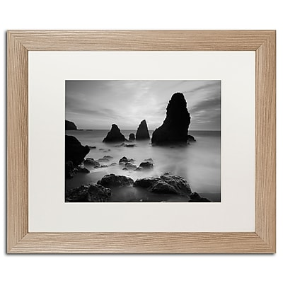 Trademark Fine Art ''Rodeo Beach I Black and White'' by Moises Levy 16