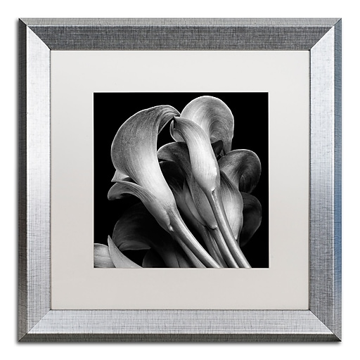 "Trademark Fine Art ''Lillies'' by Michael Harrison 16"" x 16"" White Matted Silver Frame (ALI0288-S1616MF)"