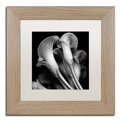 Trademark Fine Art ''Lillies'' by Michael Harrison 11