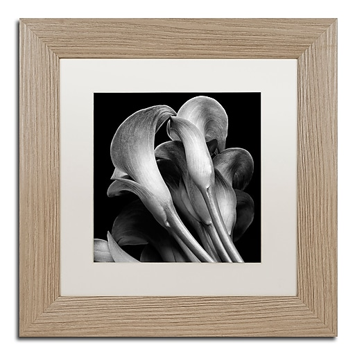 "Trademark Fine Art ''Lillies'' by Michael Harrison 11"" x 11"" White Matted Wood Frame (ALI0288-T1111MF)"