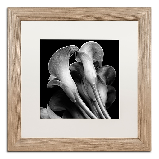 "Trademark Fine Art ''Lillies'' by Michael Harrison 16"" x 16"" White Matted Wood Frame (ALI0288-T1616MF)"