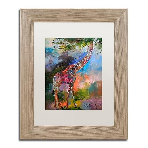 "Trademark Fine Art ''Giraffe'' by Richard Wallich 11"" x 14"" White Matted Wood Frame (ALI0345-T1114MF)"