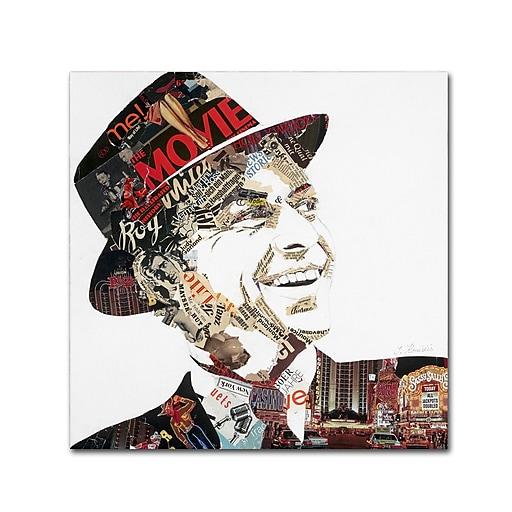 "Trademark Fine Art ''Franky'' by Ines Kouidis 35"" x 35"" Canvas Art (ALI0984-C3535GG)"