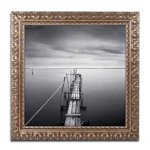 "Trademark Fine Art ''Direction'' by Moises Levy 16"" x 16"" Ornate Frame (ALI1058-G1616F)"